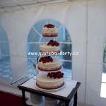 svatebni-dorty-na-stojanu-6